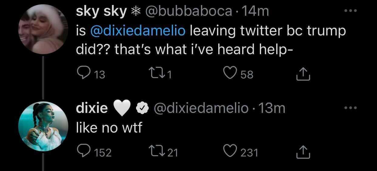 Dixie D'Amelio denies leaving Twitter due to Trump's suspension.