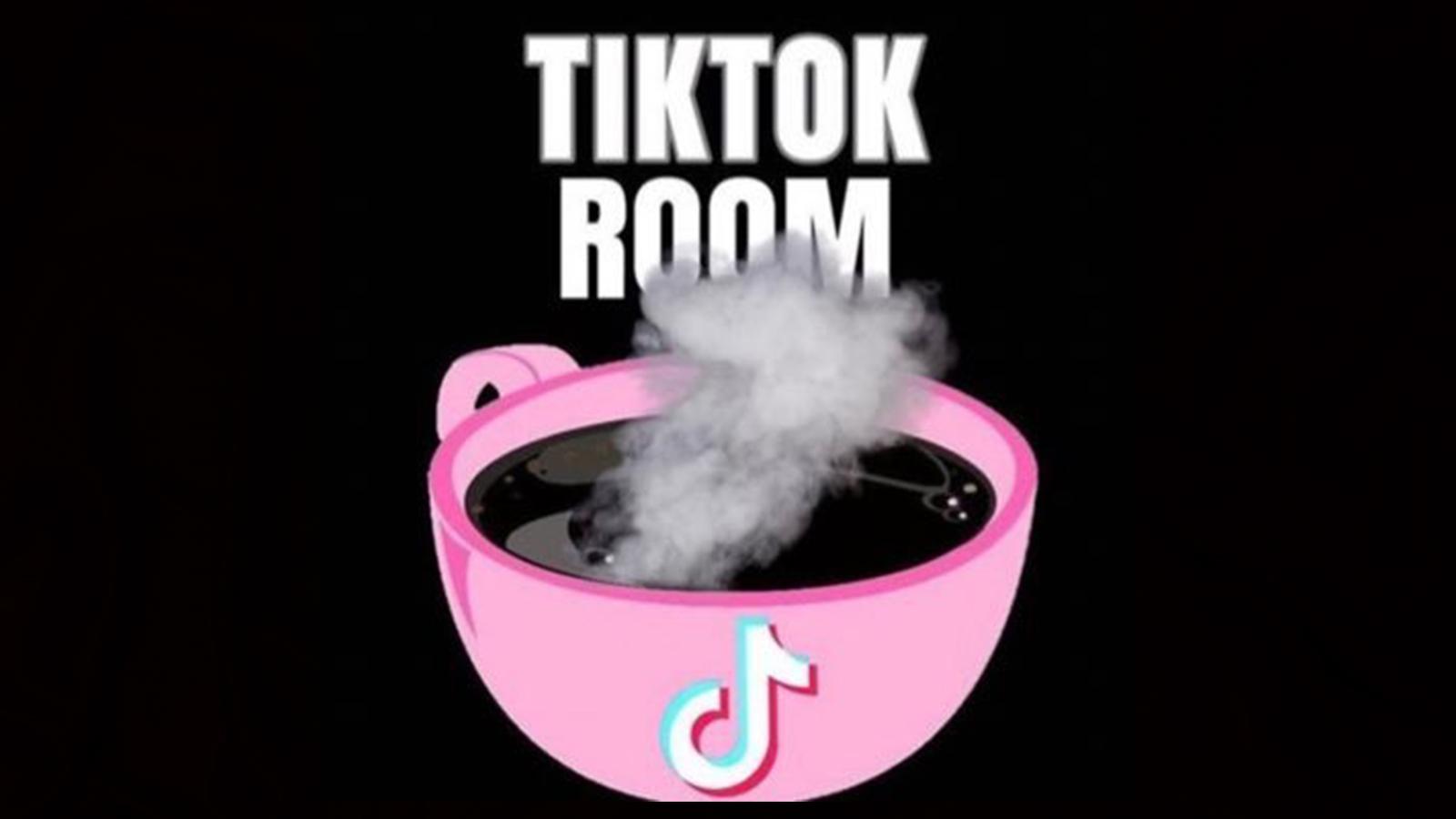 TikTokRoom instagram account disabled